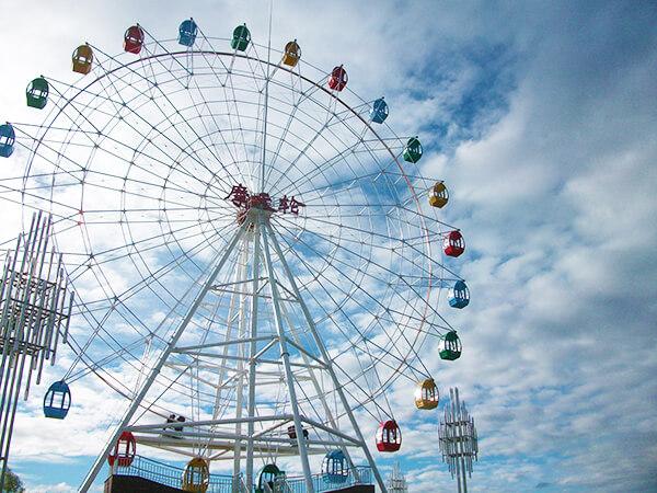 Rueda Dela Fortuna Para Parques De Atracciones, Ferias, Fabricante Profesional